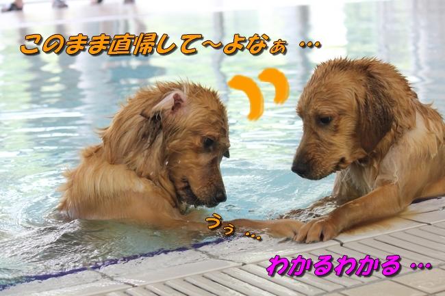 with こなつ&さくら 052