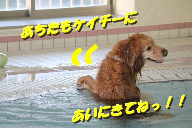 泳ぎ納め 038