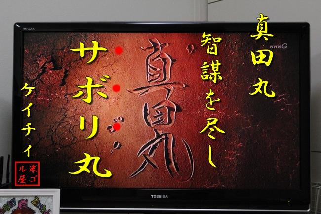 メジロ真田丸 017