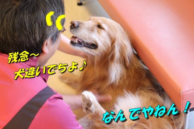 オペとエキスポシティ 010
