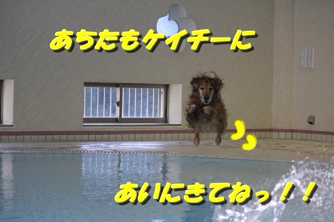 プール&旭化成謝罪 013