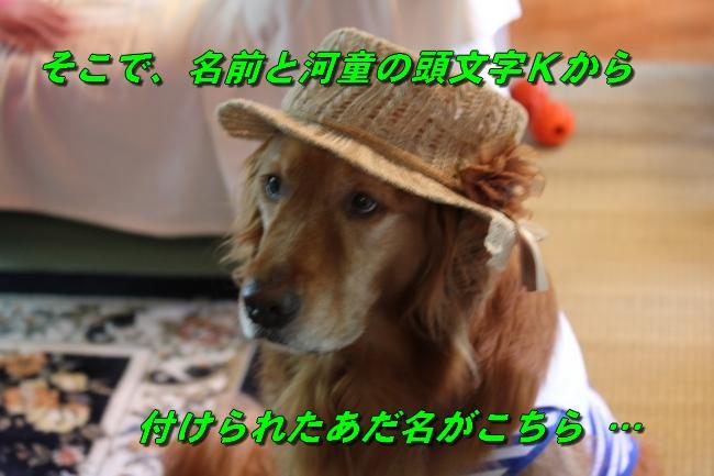 蓼科別荘 116