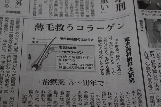 フード 001