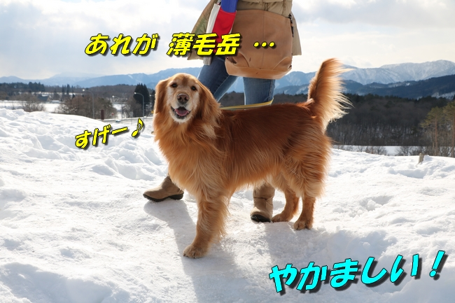 雪遊び2016 046