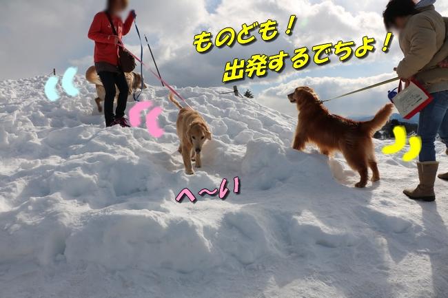 雪遊び2016 050