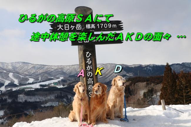 雪遊び2016 056