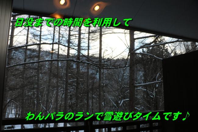 雪遊び2016 107