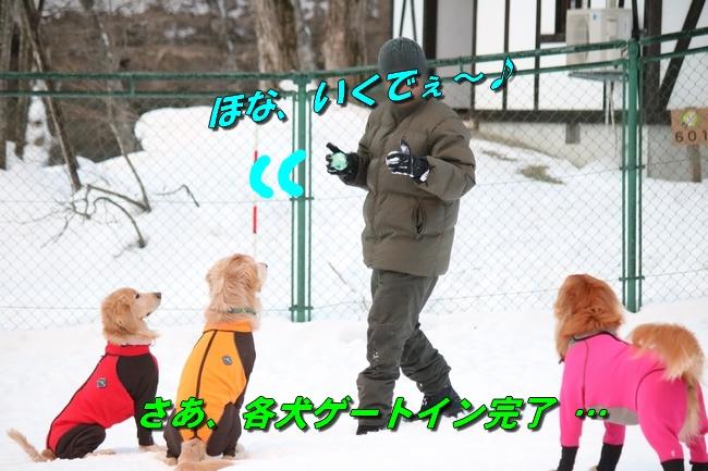 雪遊び2016 501