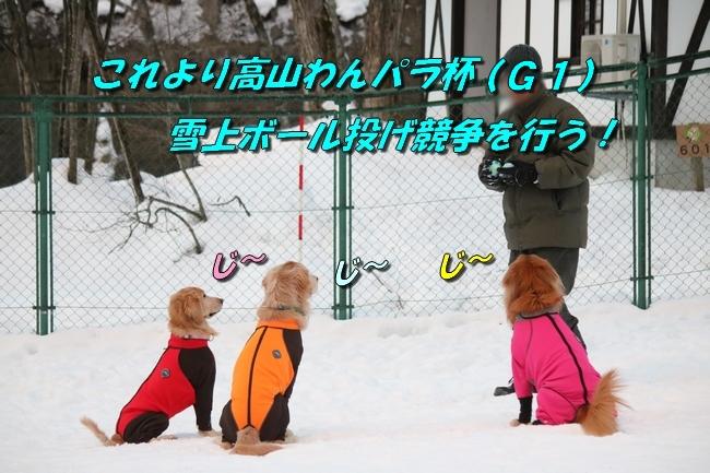 雪遊び2016 504