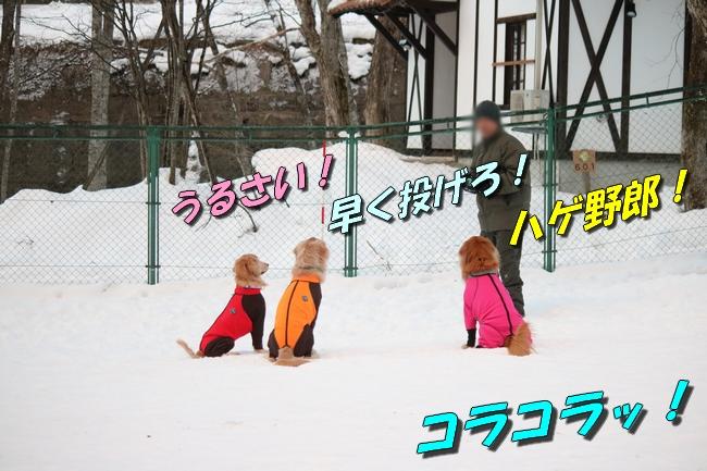 雪遊び2016 506