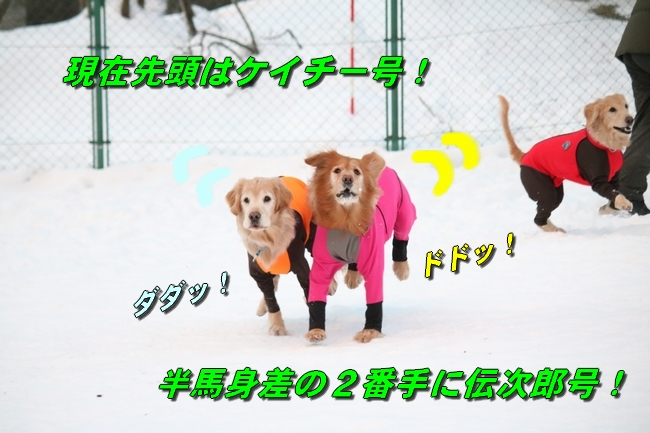 雪遊び2016 510