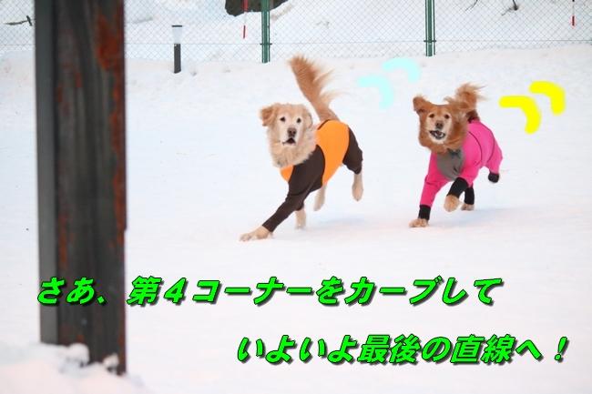雪遊び2016 511