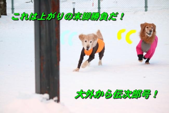 雪遊び2016 512