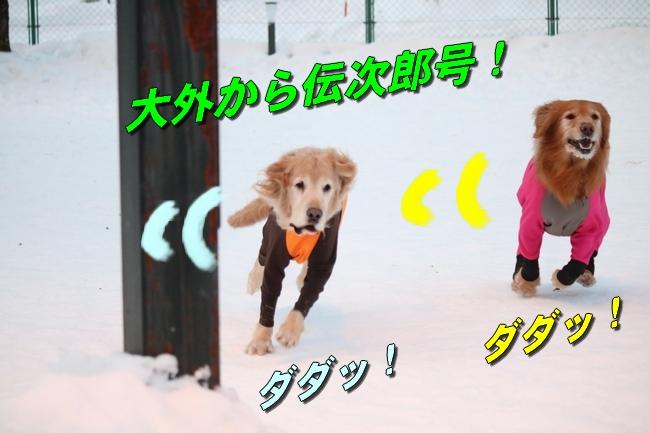 雪遊び2016 513