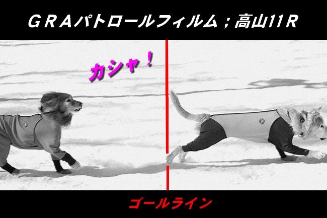 雪遊び2016 1160