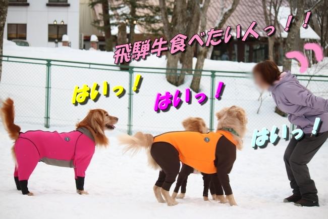 雪遊び2016 137