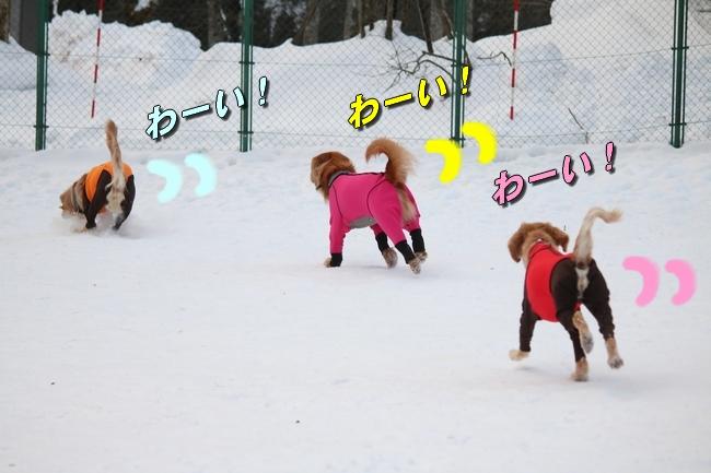 雪遊び2016 205