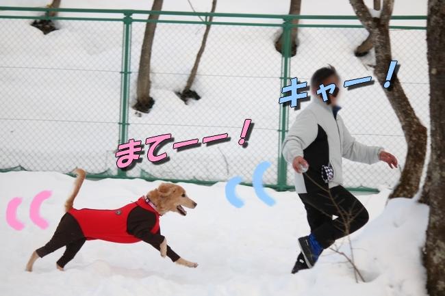 雪遊び2016 248