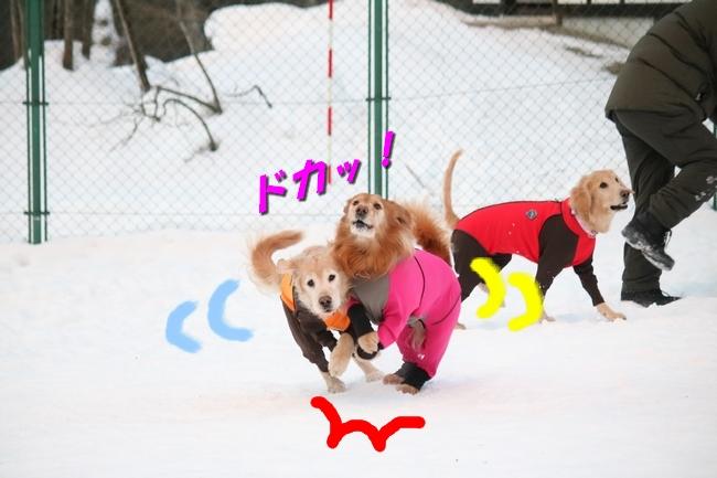 雪遊び2016 509