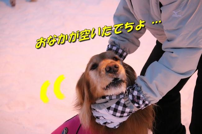 雪遊び2016 714
