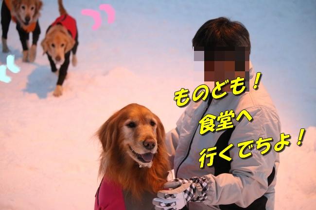 雪遊び2016 720
