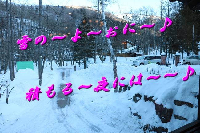 雪遊び2016 893