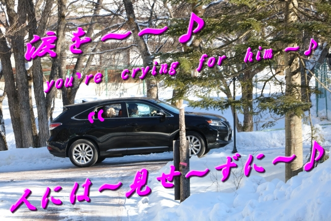 雪遊び2016 909