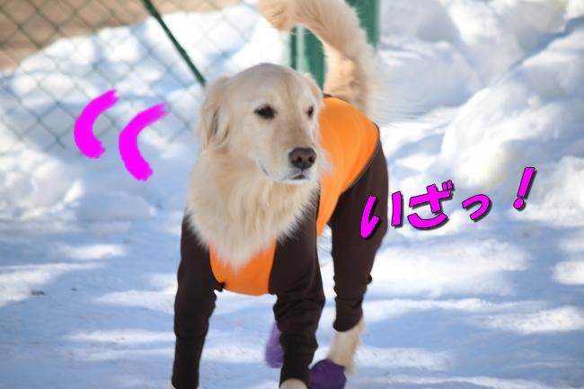 雪遊び2016 1014