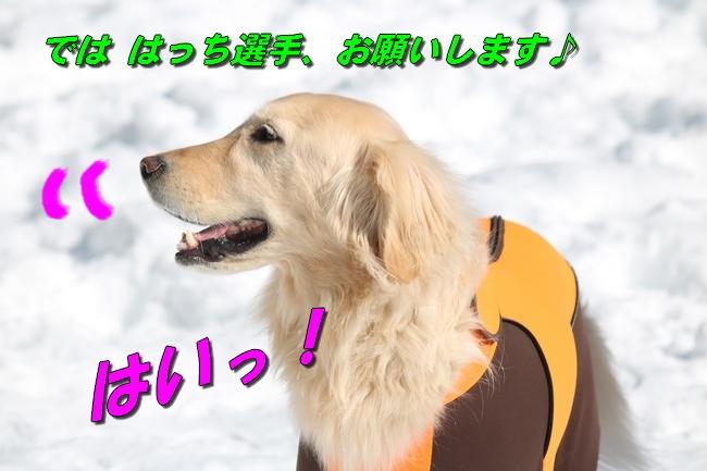 雪遊び2016 1028