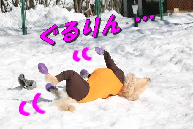 雪遊び2016 1034