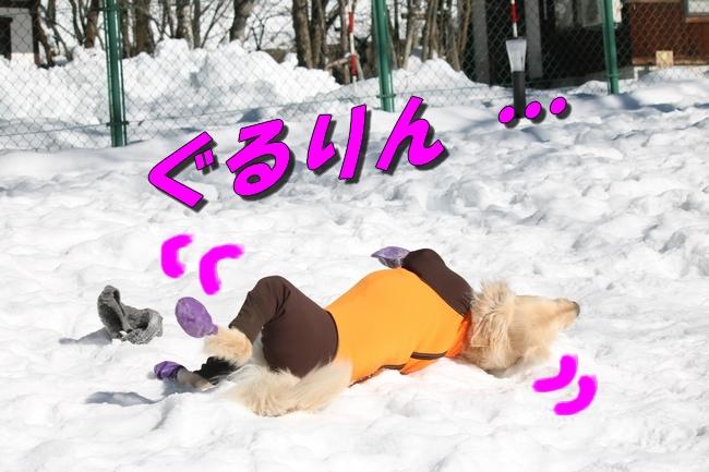 雪遊び2016 1035