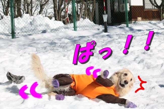 雪遊び2016 1038