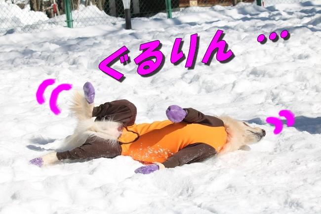 雪遊び2016 1042