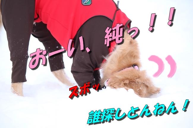 雪遊び2016 177