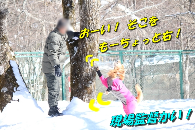 雪遊び2016 1004