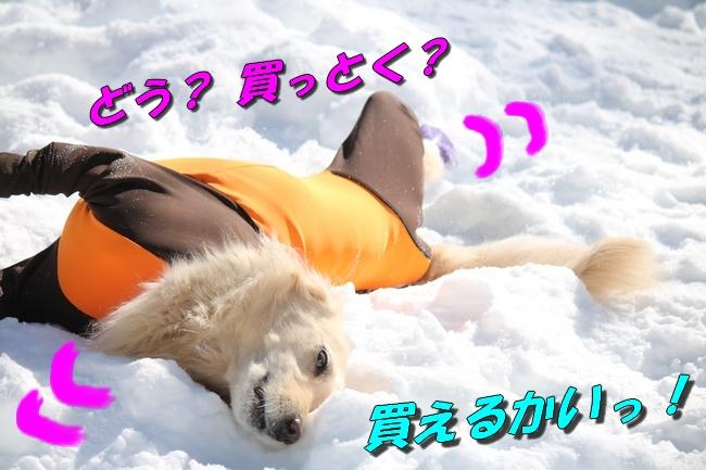 雪遊び2016 1154