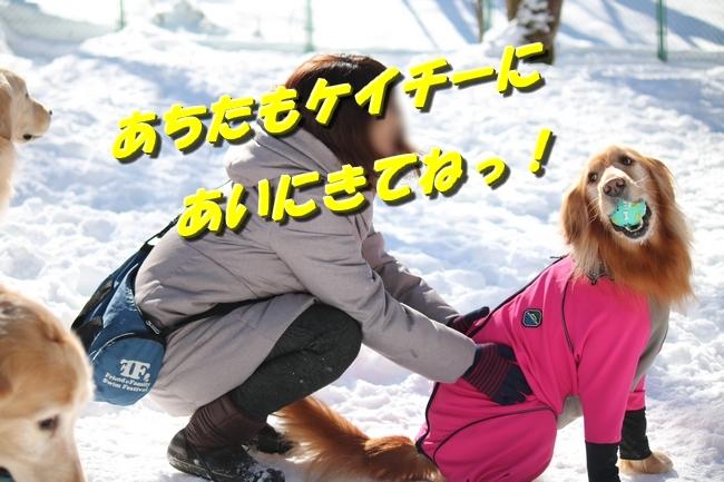 雪遊び2016 1179