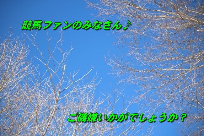 雪遊び2016 1584