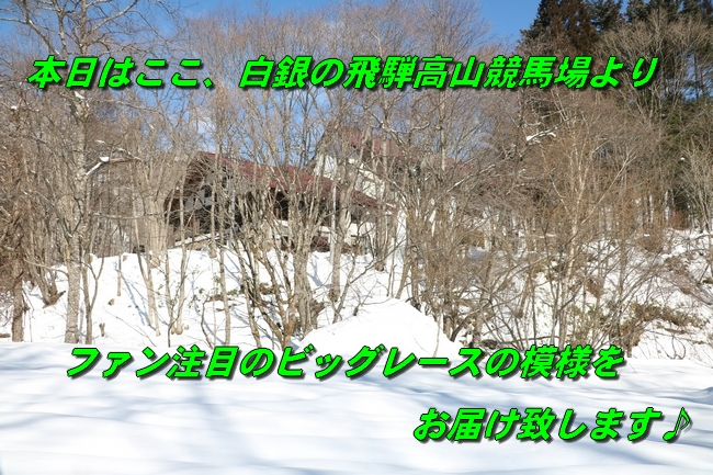 雪遊び2016 1705