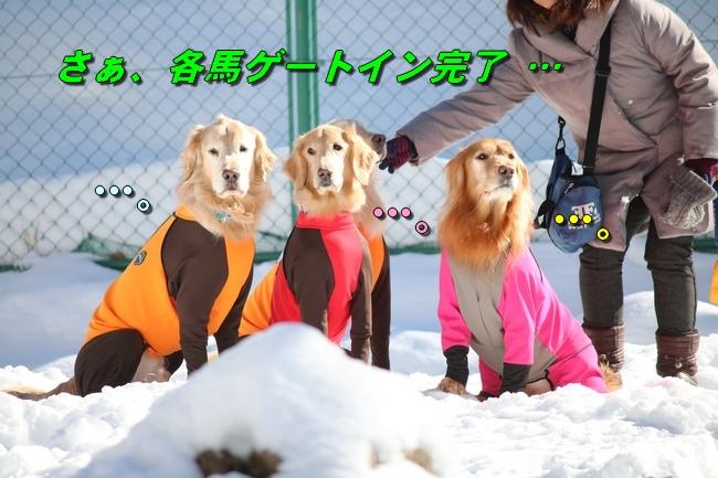 雪遊び2016 1074