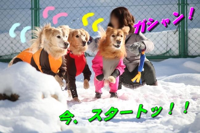 雪遊び2016 1078