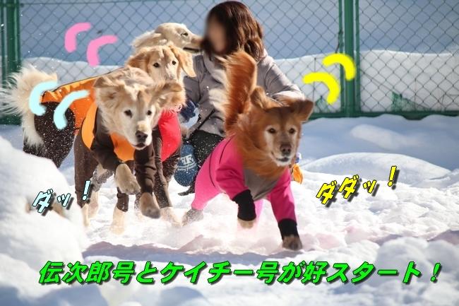 雪遊び2016 1080
