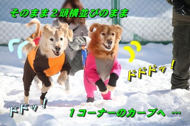 雪遊び2016 1081
