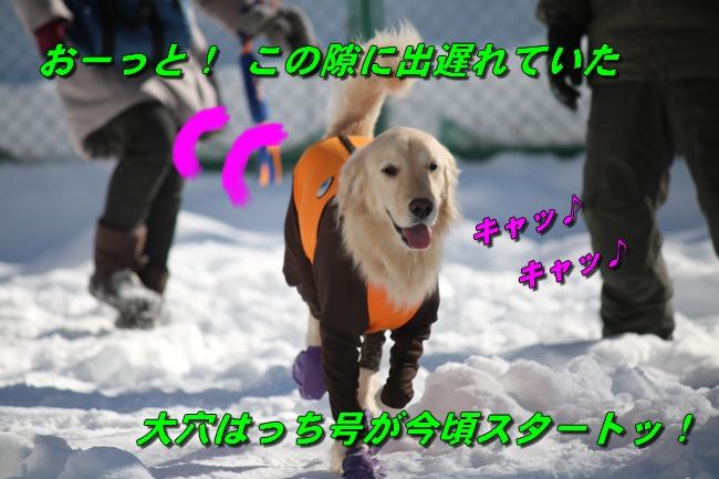 雪遊び2016 1092