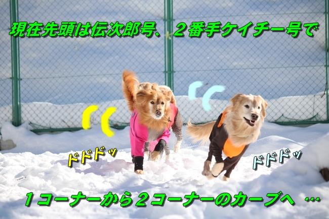 雪遊び2016 1128