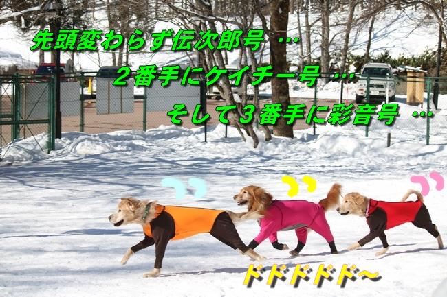 雪遊び2016 1199