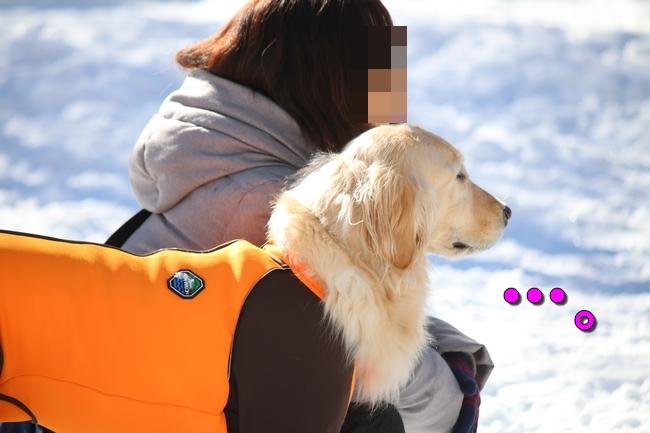 雪遊び2016 1200