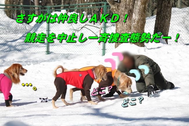 雪遊び2016 1206
