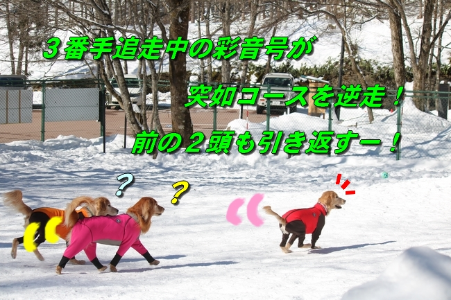 雪遊び2016 1213