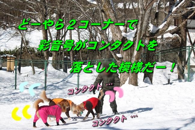 雪遊び2016 1214